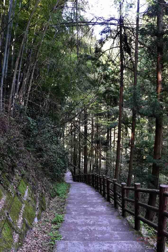 養老渓谷の遊歩道