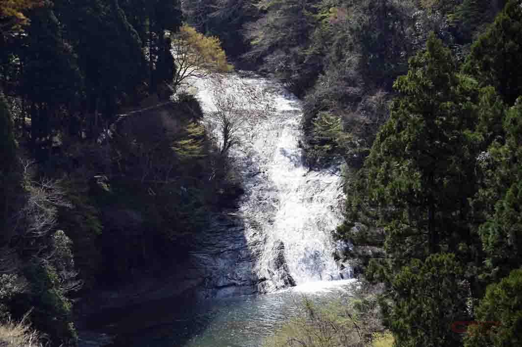 展望台から見下ろす粟又の滝