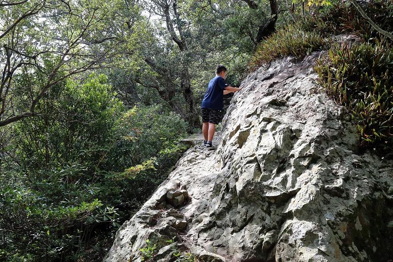 片側が切り立った岩場もある険しい山道を登る