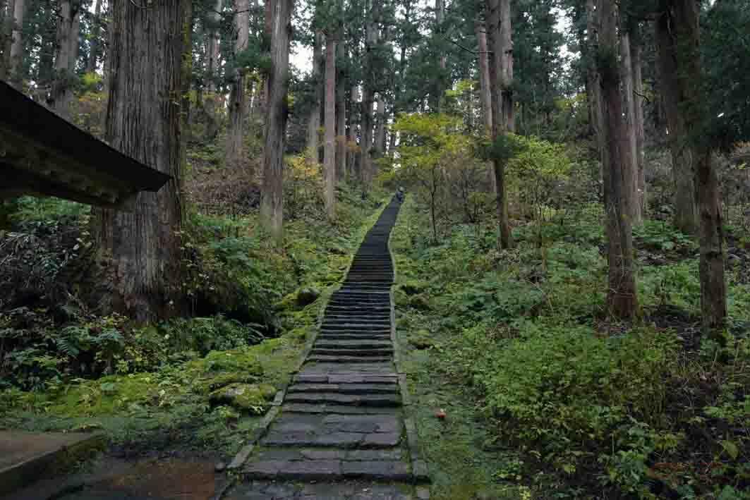 五重塔から本殿へ向かう階段の参道
