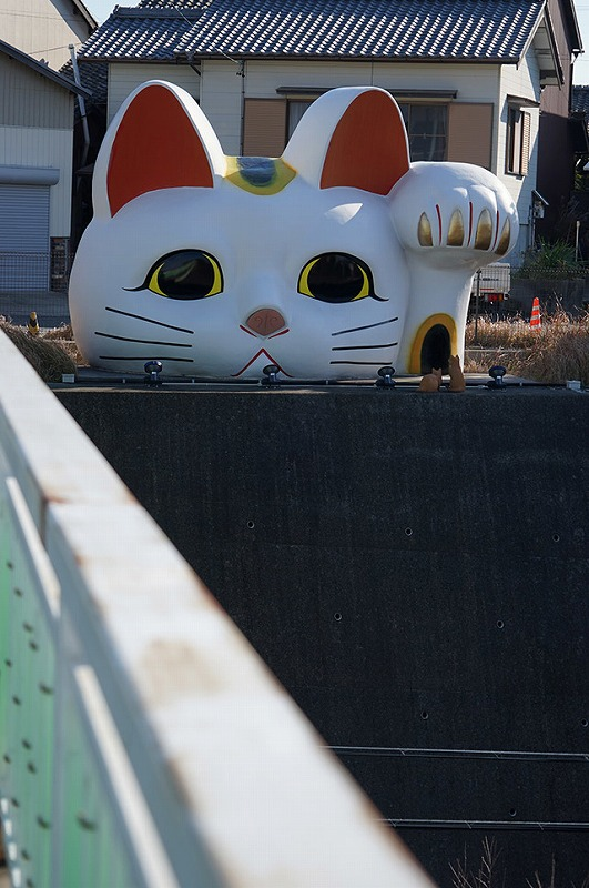 とこなめ見守り猫「とこにゃん」。かなりワンダーな光景だ